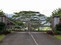Kilauea - Pili Rd06.JPG