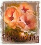 1Forwarding-peachfloral