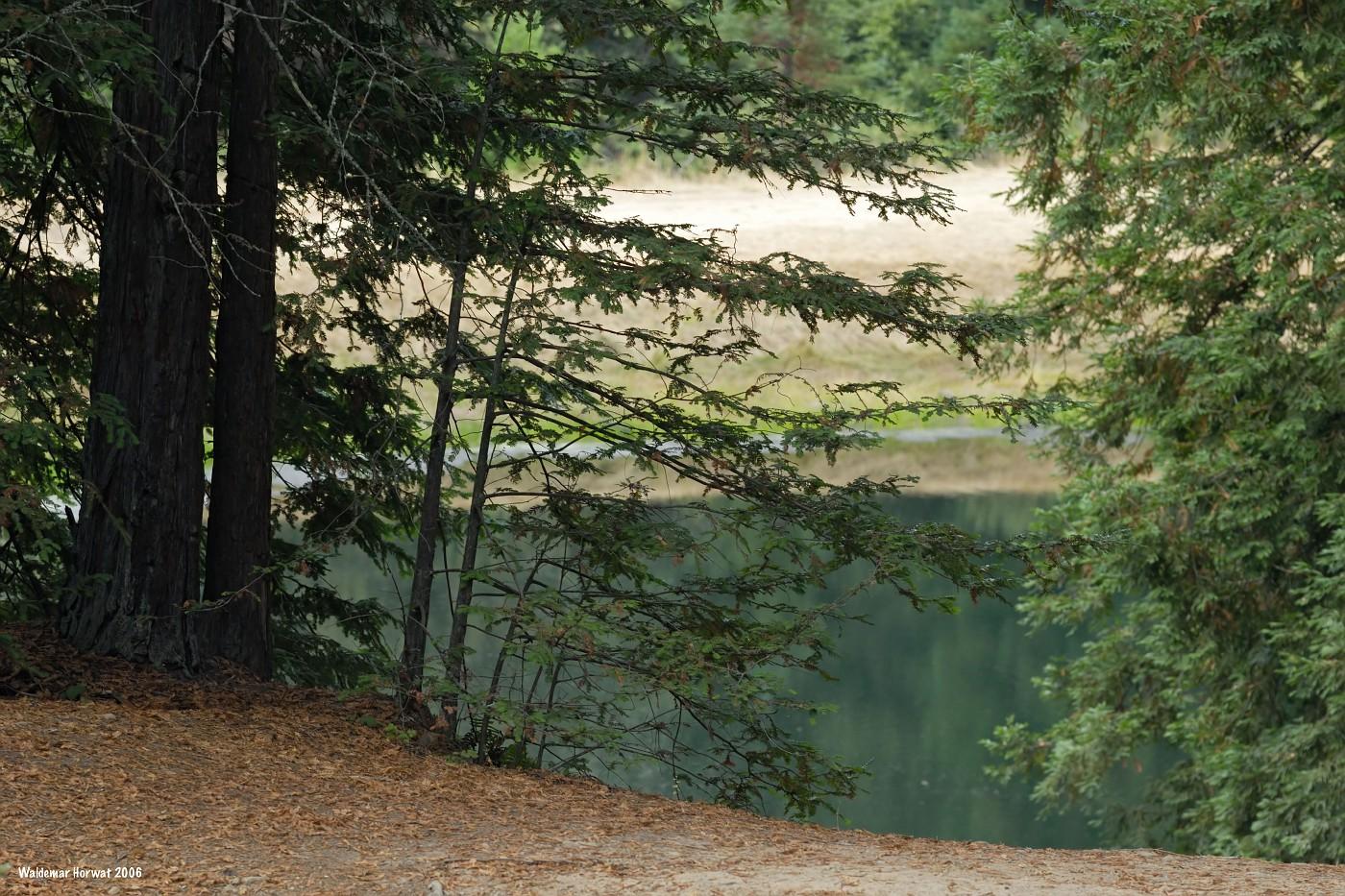 Lake Gamlen