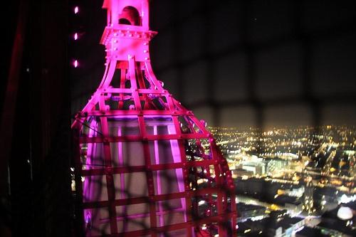 Blackpool Tower 2015 (29)
