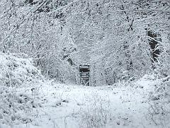 Ein Sitz in weiß