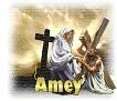 Amey - 2596
