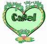 Carol-froggies