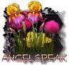 Angelspeak - 3094