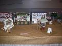 Little Fair on the Prairie 7