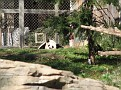 061125 Zoo 1001