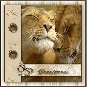 Beautimous-gailz0307-lions.jpg