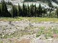 Mad Mountain Bikers