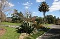 Melbourne Botanical Garden (53)