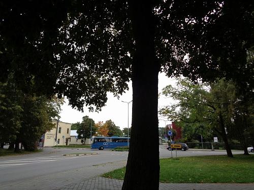 Üksiku puu sünnipäev (Jürgen Rohioja)