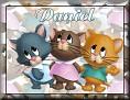 3 KittensDaniel