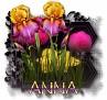 Anna - 3094