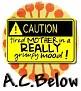 1A C Below-caution