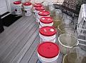 Spring Wine Making 2010 / Getting setup...